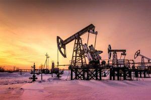 Dự báo giá dầu tuần tới