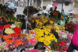 Rau xanh, hoa tươi ế ẩm, rớt giá mạnh sau Tết