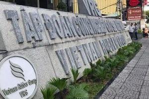 Kiến nghị điều tra việc sử dụng nhà đất tại GVR, TCT Lâm nghiệp và TCT Chè
