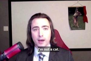 'Tôi không phải là mèo', câu nói hài hước thời Covid-19