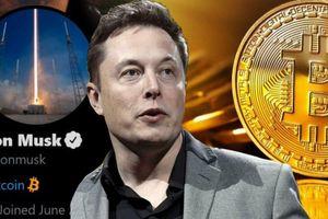 Elon Musk: 'Bitcoin đỡ ngớ ngẩn hơn tiền mặt'