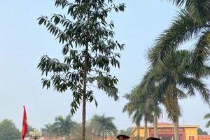 Đồng chí Trương Thị Mai phát động Tết trồng cây 'Đời đời nhớ ơn Bác Hồ' tại Trung đoàn 102