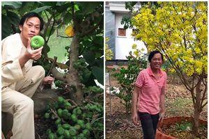 Mướt mắt vườn cây sai trĩu quả trong nhà thờ Tổ của Hoài Linh