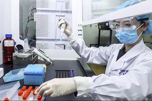 Covid-19 ở Việt Nam sáng 20/2: Không có ca mắc mới, hội chẩn quốc gia 3 bệnh nhân rất nặng