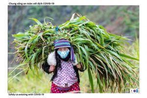 ng bào dân tộc Hà Giang phát triển kinh tế bền vững, chống dịch hiệu quả
