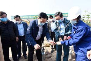 Hà Nội phấn đấu trong năm 2021 sẽ trồng 300 nghìn cây xanh