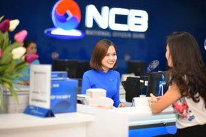 Ngân hàng NCB: Lợi nhuận èo uột, cổ phiếu đi xuống