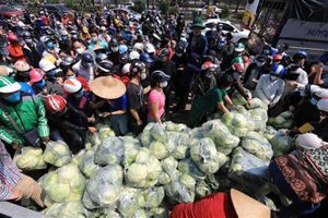 Các hệ thống phân phối của Hà Nội nỗ lực hỗ trợ tiêu thụ nông sản từ Hải Dương