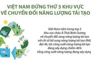 Vị trí của Việt Nam về chuyển đổi năng lượng tái tạo ở khu vực châu Á - Thái Bình Dương