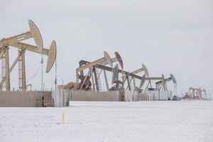 Phiên 22/2: Sản xuất dầu ở Mỹ phục hồi chậm kéo giá dầu châu Á tăng
