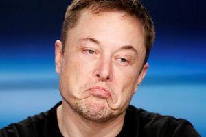 5 vị tướng trụ cột trước đây của Tesla trở thành đối thủ với Elon Musk