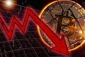 Tỷ phú Elon Mush chê đắt, Bitcoin và thị trường tiền ảo lao dốc