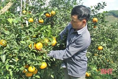 Vũ Quang (Hà Tĩnh): Bước chuyển từ xây dựng nông thôn mới