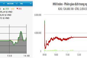VN-Index tăng hơn hai điểm