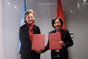 Trường ĐH Fulbright Việt Nam kết hợp cùng UNDP nghiên cứu chính sách kinh tế Việt Nam