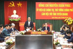 Tuyên Quang phải trở thành cứ điểm quan trọng của ngành gỗ Việt Nam và khu vực