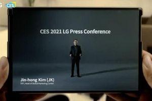 LG có thể từ bỏ kế hoạch phát triển smartphone có khả năng cuộn lại