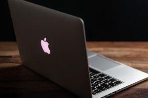 Gần 30.000 máy tính của Apple bị nhiễm mã độc 'Sẻ bạc' bí ẩn