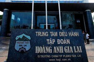 Mổ xẻ khoản lỗ hơn 5.000 tỉ đồng của HAG