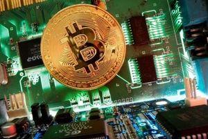 Giá Bitcoin lao dốc, hàng trăm tỷ vốn hóa bốc hơi