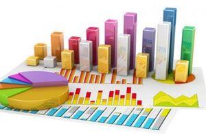 Chiến lược phát triển Thống kê Việt Nam giai đoạn 2021 - 2030