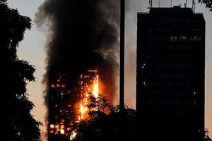 TPHCM: Phục hồi điều tra vụ án cháy chung cư Carina Plaza