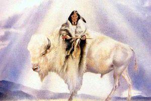 Nữ thần bò trắng linh thiêng của người da đỏ ở Mỹ