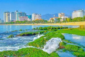 Bãi rêu xanh- Hứa hẹn điểm check-in độc đáo trên vịnh Nha Trang