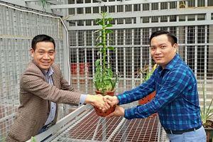 Tuyên Quang: Chàng trai 8X thành công với mô hình trồng hoa lan ứng dụng công nghệ cao