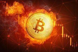 Giá Bitcoin hôm nay 24/2: Thị trường nhuốm máu, Bitcoin có 'đổ vỡ'?