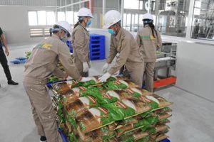 Đầu năm, gạo Việt Nam được nhiều nước mua với giá cao