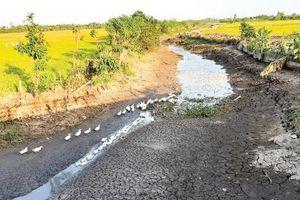 Nam Bộ tiếp tục bị xâm nhập mặn, nguồn nước sông ở Bắc Bộ thiếu hụt 20-30%