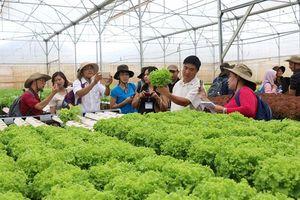 Ninh Bình ứng dụng khoa học - công nghệ vào sản xuất nông nghiệp