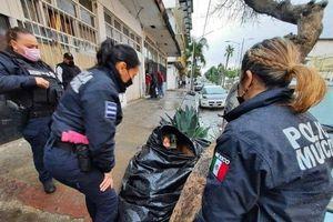 Bà lão 65 tuổi sống trong túi rác quyết không rời đi vì lý do cảm động