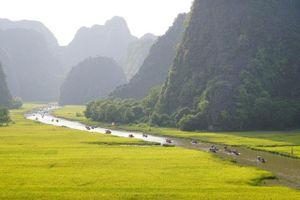 Khám phá Tràng An, chinh phục Lũng Cú và loạt trải nghiệm 'gây thương nhớ' ở Việt Nam khiến khách Tây ấn tượng