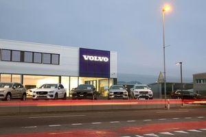 Volvo và Geely từ bỏ kế hoạch sáp nhập