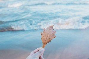 9 lời khuyên của bậc thầy phong thủy để cuộc sống thêm suôn sẻ