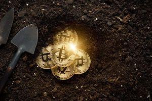 Giá Bitcoin hôm nay 25/2: Bitcoin bẻ lái, tiền ảo vụt tăng