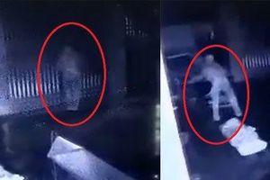 Hà Nội: Bắt đối tượng trộm xe SH trong đêm khuya ở Thanh Xuân