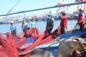 Tàu đánh bắt xa bờ của ngư dân Bình Định hồ hởi mở biển đầu năm