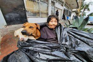 Cụ bà sống trong túi rác cùng 6 chú chó suốt 8 năm