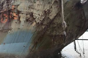 Sự thật xác tàu 'lạ' trôi dạt vào bờ biển Gành Hào