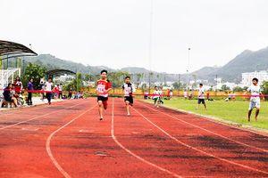 Cơ sở vật chất thể thao tỉnh Khánh Hòa sẽ sớm được đầu tư, sửa chữa
