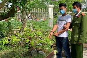 Liên tiếp bắt giữ các đối tượng trộm cây mai cảnh của người dân