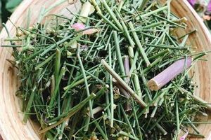 Dùng thứ cây vào mùa và rẻ như cho này, căn bếp có ám mùi đến mấy cũng sạch thơm dễ chịu, củ sả hay vỏ chanh đều thua xa
