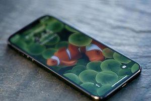 Ảnh dựng thiết kế iPhone 13 dựa trên tin đồn