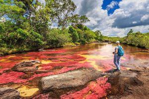 Dòng sông ngũ sắc ở Colombia