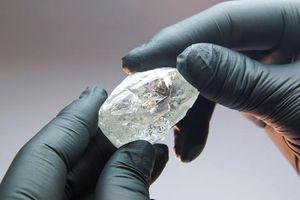 Đấu giá viên kim cương 242 carat với mức khởi điểm 2 triệu USD