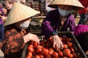 Các điểm giải cứu nông sản Hải Dương nở rộ khắp Hà Nội