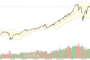 Xu thế dòng tiền: Biến động trên thị trường quốc tế không đáng ngại?